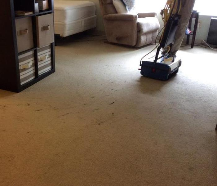 Trust the experts with your stained carpet.  Before
