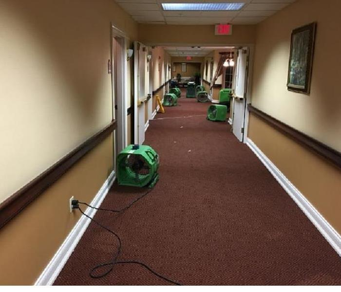 Trust SERVPRO of Williamson County with your Commercial Water Loss After