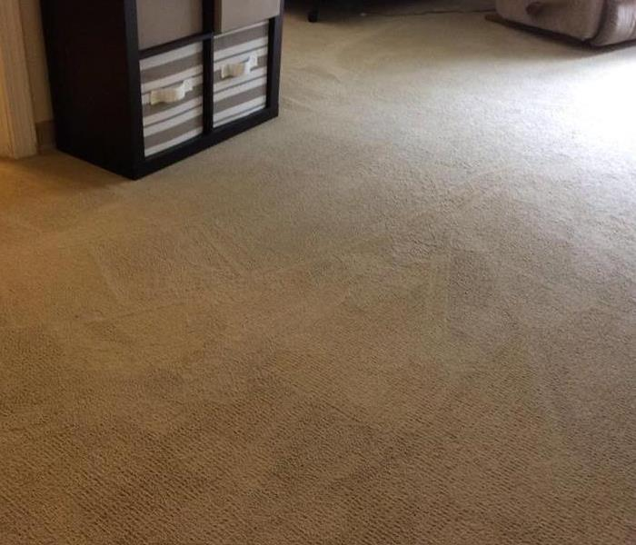 Trust the experts with your stained carpet.  After