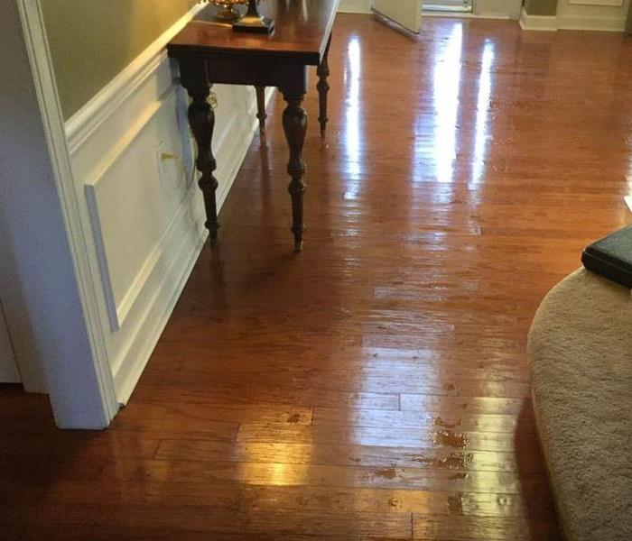Water Damage in Nolensville, TN