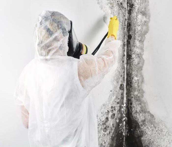Man in hazmat suit removing mold from the wall