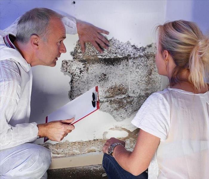 Mold hygienist with blonde female with mold destroyed wall explaining the problem