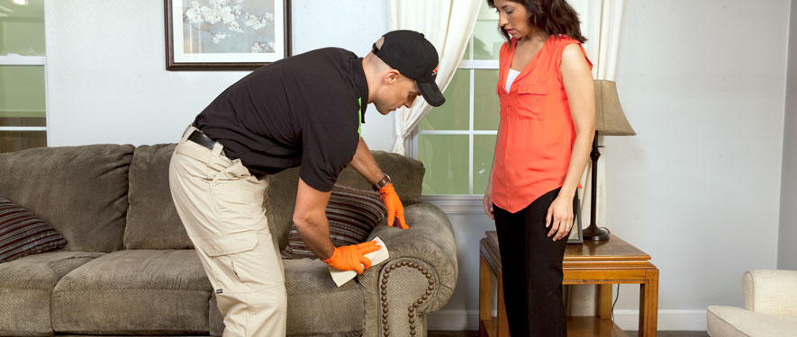 Brentwood, TN carpet upholstery cleaning