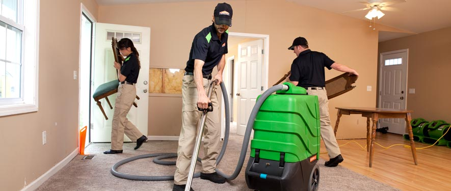 Brentwood, TN cleaning services