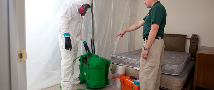 Franklin, TN mold removal process